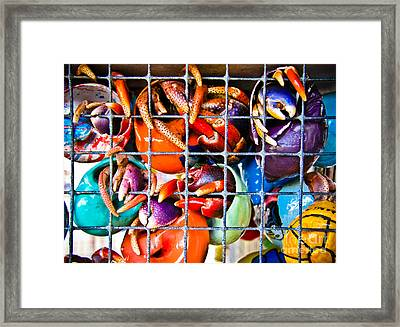 Hanging With My Buds Framed Print by Colleen Kammerer