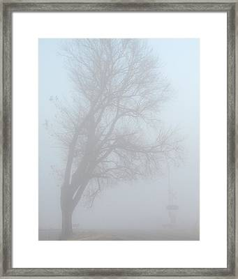 Hangman's Tree Framed Print