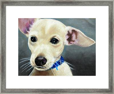 Hank Framed Print by Jeanne Fischer
