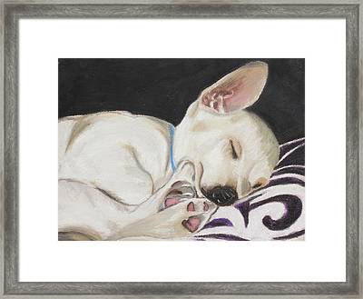 Hanks Sleeping Framed Print by Jeanne Fischer