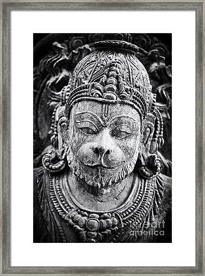 Hanuman Monochrome Framed Print by Tim Gainey