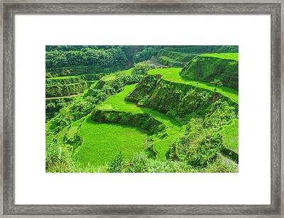Hapao Rice Terraces, Part Of The World Framed Print