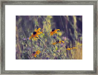 Happiness Is In The Meadows - L03 Framed Print