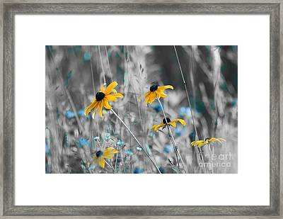 Happiness Is In The Meadows - Sc02a Framed Print