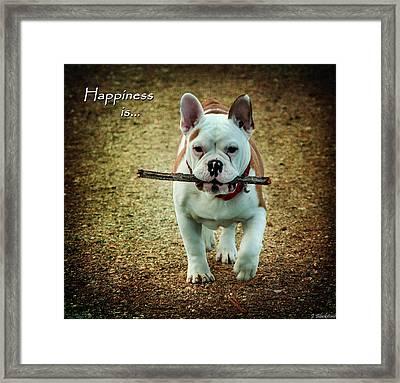 Happiness Is Framed Print by Jordan Blackstone