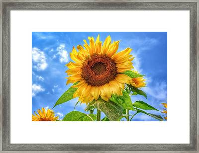 Happiness Is...... Framed Print