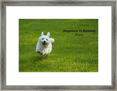 Happiness Is Running Free Framed Print