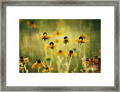 Happiness Framed Print by Joan McCool