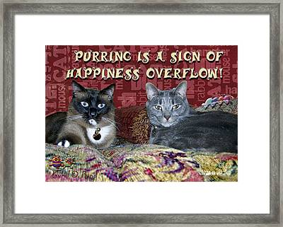 Happiness Overflow Framed Print