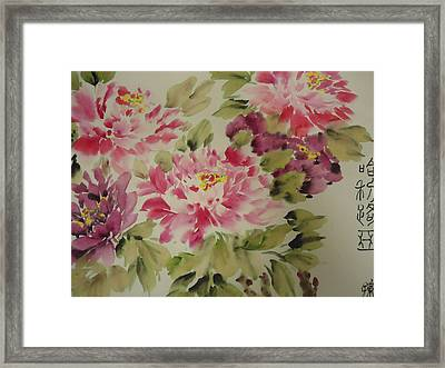 Happy 006 Framed Print