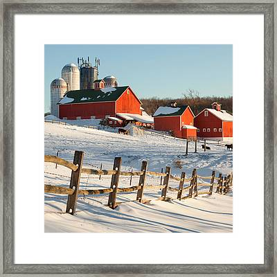 Happy Acres Farm Square Framed Print by Bill Wakeley