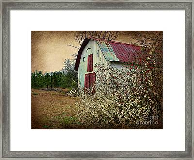 Happy Barn In Spring Framed Print by Lorraine Heath