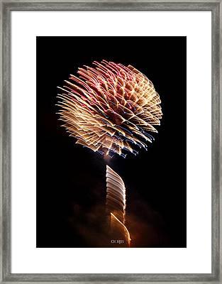 Happy Birthday America Framed Print
