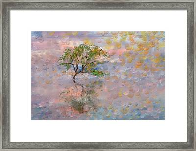 Happy Birthday Good Old Tree Framed Print by Angela A Stanton