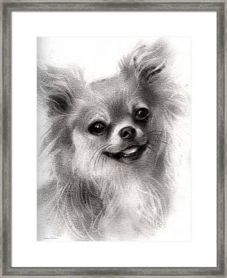Happy Chihuahua Dog Portrait Framed Print