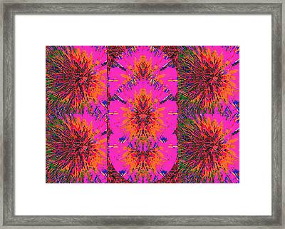 Happy Dance Of The Pink Flowers Framed Print