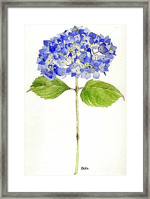 Happy Day Framed Print by Catherine Bede
