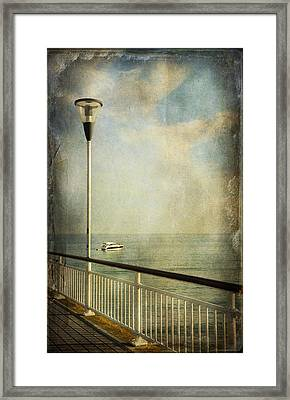 Happy Day Framed Print by Svetlana Sewell