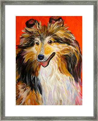 Happy Dog  --  Sheltie Framed Print
