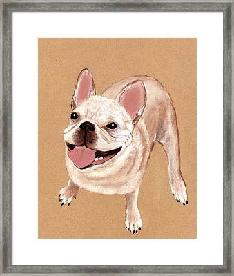 Happy Dog Framed Print by Anastasiya Malakhova