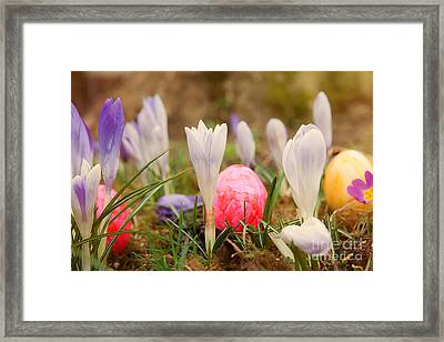 Framed Print featuring the photograph Happy Easter 2 by Christine Sponchia