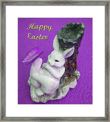 Happy Easter Card 4 Framed Print by Aimee L Maher Photography and Art Visit ALMGallerydotcom
