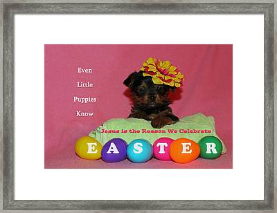 Happy Easter Framed Print by Lorna Rogers Photography