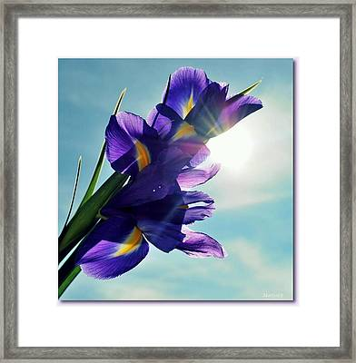 Framed Print featuring the photograph Happy Easter  by Marija Djedovic