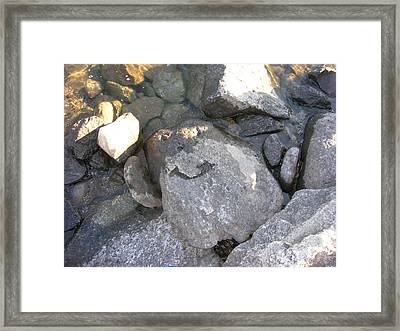 Framed Print featuring the photograph Happy Face by Kristen R Kennedy