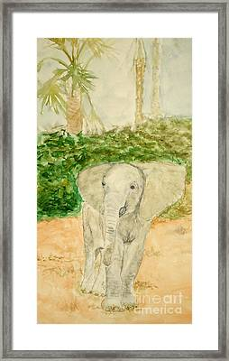 Happy Fellow Framed Print by Katie Spicuzza