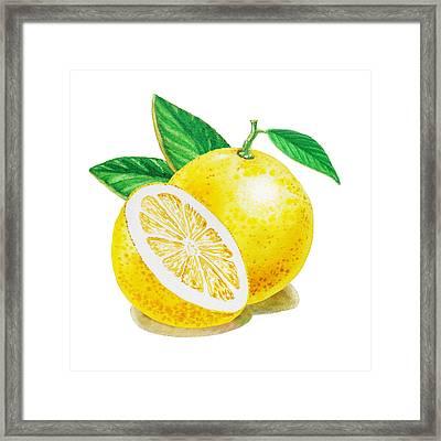 Happy Grapefruit- Irina Sztukowski Framed Print by Irina Sztukowski