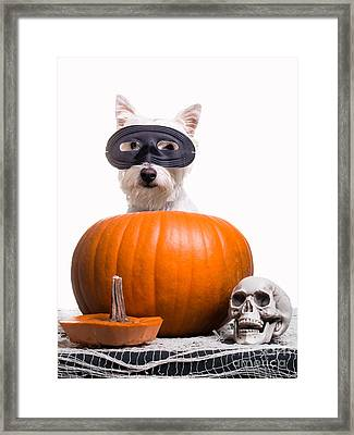 Happy Halloween Framed Print by Edward Fielding