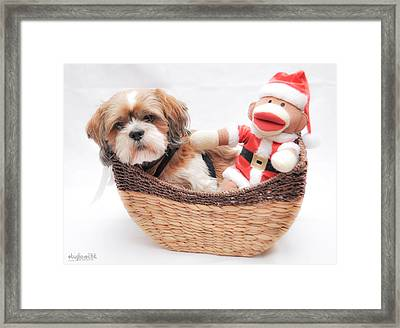 Happy Holidays Framed Print by Sarai Rachel