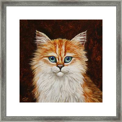 Happy Kitty Framed Print by Crista Forest