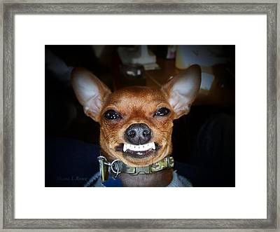 Happy Max Framed Print