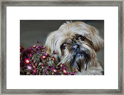 Happy Mother's Day Framed Print by Nicole Markmann Nelson