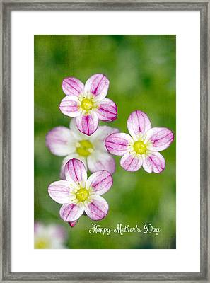 Happy Mothers Day Framed Print by Rebecca Cozart