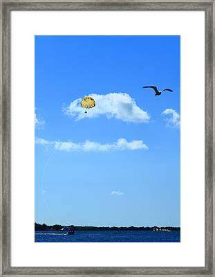 Framed Print featuring the photograph Happy Parasailing by R B Harper