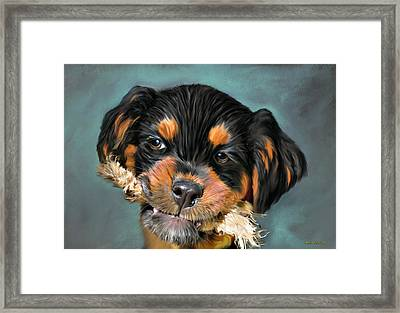 Happy Puppy Framed Print by Angela A Stanton