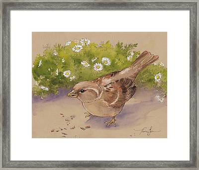Happy Sparrow 5 Framed Print by Tracie Thompson