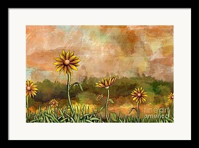 Sunflower Field Mixed Media Framed Prints