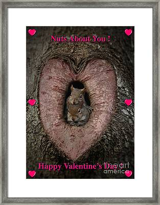 Happy Valentine Squirrels Framed Print