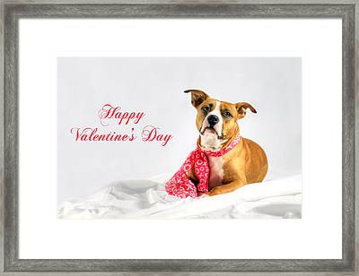 Fifty Shades Of Pink - Happy Valentine's Day Framed Print