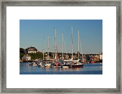 Harbor At Marthas Vineyard Framed Print