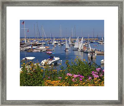 Framed Print featuring the photograph Harbor In Bloom by Caroline Stella