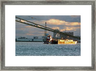 Framed Print featuring the photograph Harbor Life by John Collins