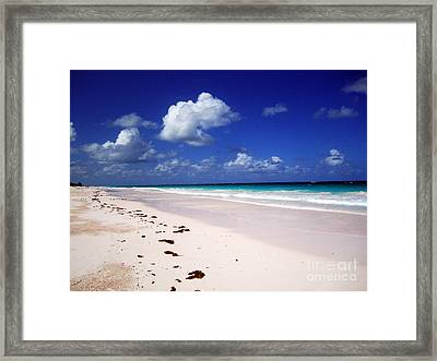 Harbour Island Framed Print by Alison Tomich
