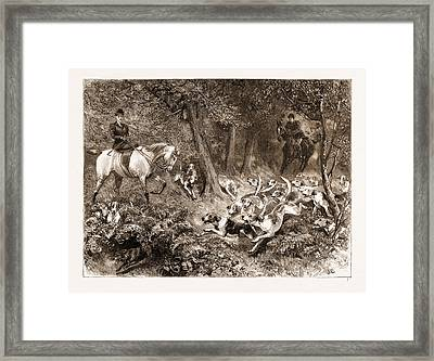 Hard Pressed A Woodland Scene Framed Print by Litz Collection