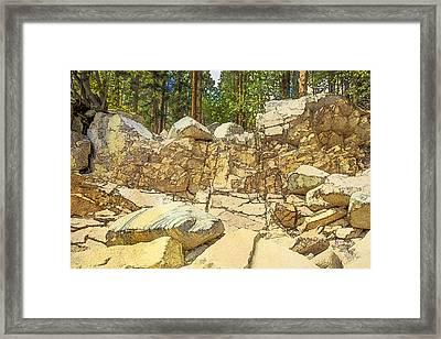 Hard Rock Forest Framed Print