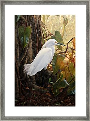 Hard To Hide Framed Print by Tim Davis